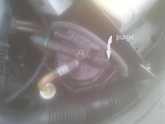 purge filtre renault.jpg
