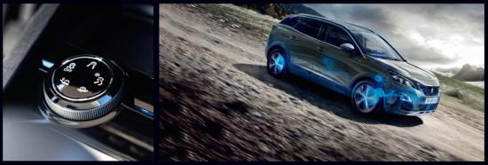 Peugeot-Gripcontrol.png